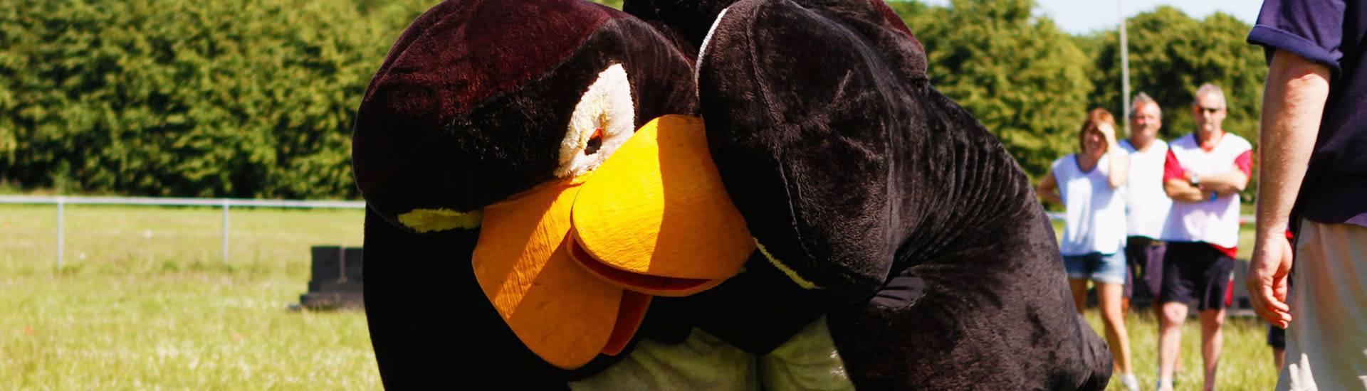 Penguin Pursuit